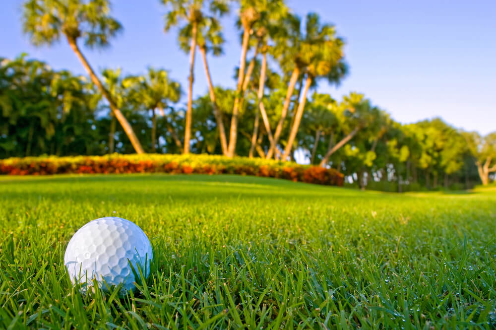 Picture of Best Golf Courses in the Bahamas