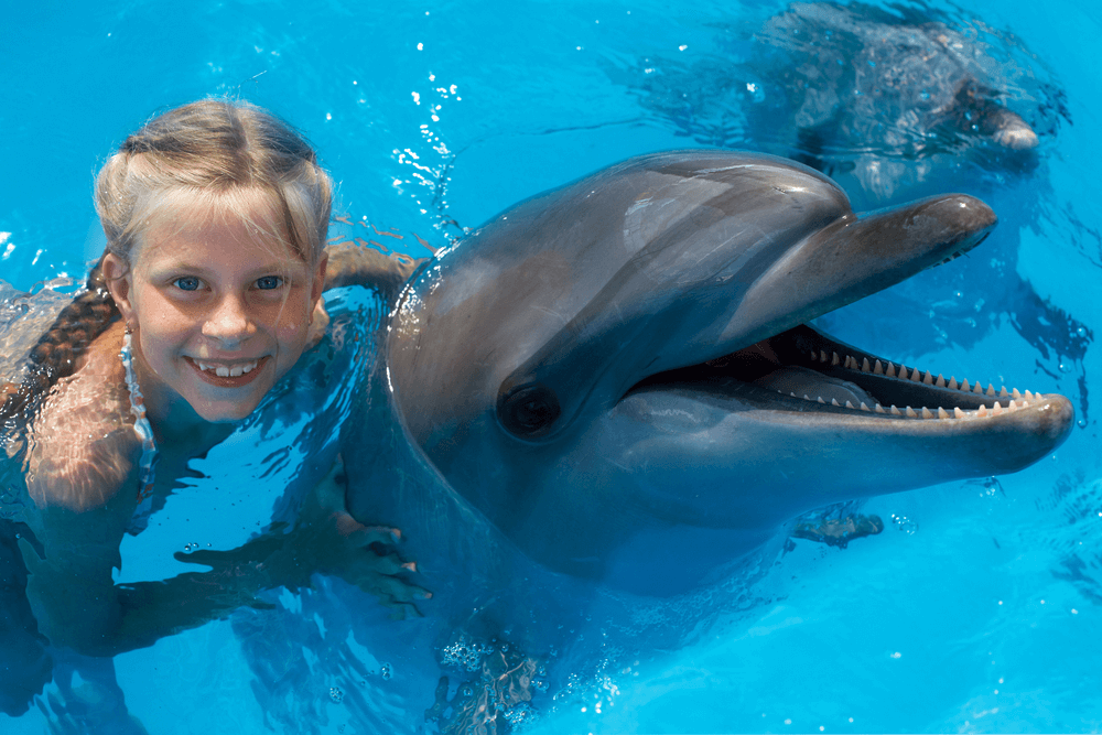 Phot of a girl swimming with dolphins in the Bahamas