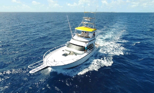 A photo of one of the top Bahamas boats and charters that offer tours